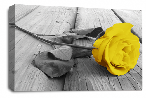 Rose Flower Canvas Wall Art Yellow Grey White Floral Picture Print
